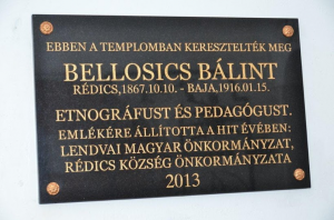 bb-redics-06